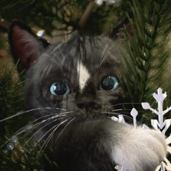 Felini wishes Meowy Catmas!