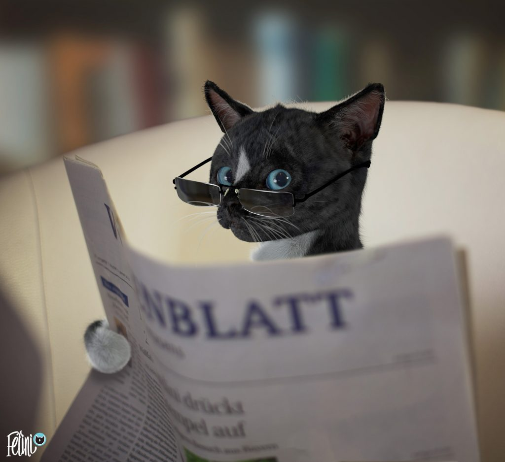 Felini funny cat reads newspaper and give us a look