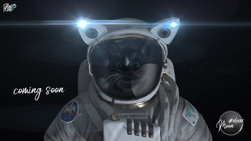 Felini Turbofluff flys to the moon: dearMoon project