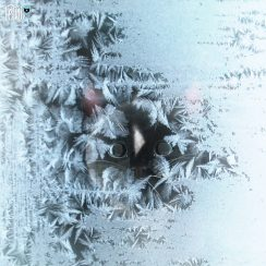 felini turbofluff behind frozen glass window