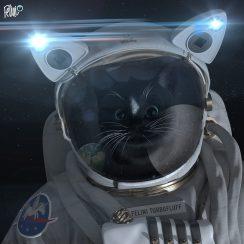 Felini =^..^= ~ Dear Moon
