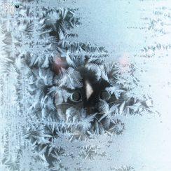 felini turbofluff behind frozen glass window