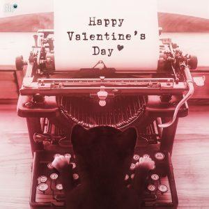 Felini =^..^= ~ Happy Valentine's Day