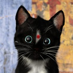 Felini =^..^= ~ Happy Holi