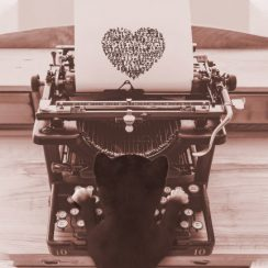 Shop Felini typewriter designs